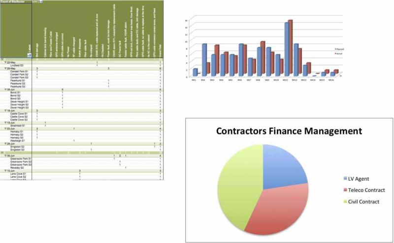 Program Project Management Risk Assessment Finance Control